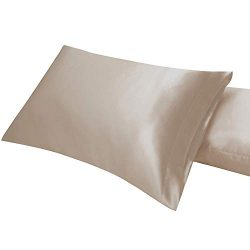 Omelas 2 Pack Standard Silk Satin Pillowcases for Hair and Skin Queen Size Silky Smooth Pillow C ...