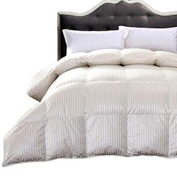 Royal Hotel Abripedic Silk Goose-Down Comforter, Luxury Down Duvet Insert, 450 TC Cotton-Silk St ...