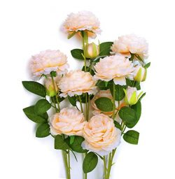 MaxFlowery Artificial English Cabbage Rose 4 Branch 12 Stems Bundle Mixed Blooms & Buds Spay ...