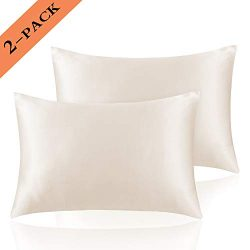 Ravmix Silky Satin Pillowcases for Hair and Skin Set of 2 Queen Size Pillow Cover Envelope Closu ...