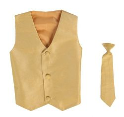 Vest and Clip On Boy Necktie set – GOLD – 8/10