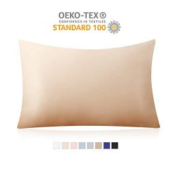 100% Pure Mulberry Silk Pillowcase for Hair and Skin, 19 Momme Both Sides, Hidden Zipper – ...
