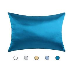 Hodeco Nature Silk Pillowcase 14×20 Inches Double Sides 100% Mulberry Silk 19 Momme Thick S ...