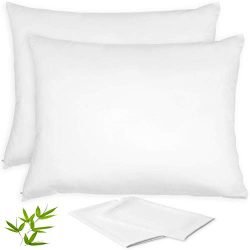 Vegan Silk Bamboo Pillow Cases – Set of 2 Zippered Pillowcase | Best Beauty Pillow & A ...