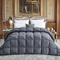 Luxurious All-Season Goose Down Comforter Queen Size Duvet Insert, Exquisite Gray Stripe Design, ...