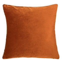 Homey Cozy Velvet Throw Pillow Cover,Orange Series Basic Solid Soft Fuzzy Cozy Warm Slik Decorat ...
