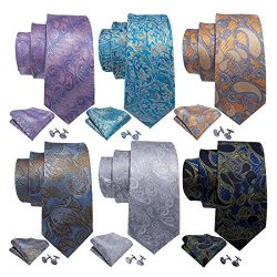 Barry.Wang Men's Tie Set Silk Wedding Neckties Jacquard Woven Fashion Formal Business (6PC ...