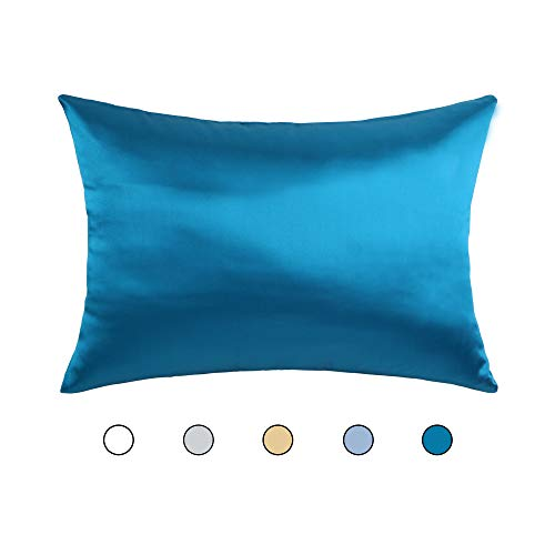 Hodeco Nature Silk Pillowcase Peacock Blue 20×30 Inches Double Sides 100% Mulberry Silk 19  ...