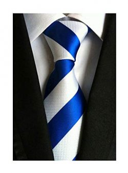 Elfeves Men's Wide Stripe Blue and White Jacquard Woven Silk Tie Formal Neckties