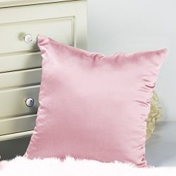 Tim & Tina 100% Pure Mulberry Luxury Silk Satin Pillowcase,Square Decorative Throw Pillow Ca ...