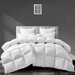 APSMILE European Goose Down Comforter King Size Luxurious All Seasons Duvet Insert -1600TC Ultra ...
