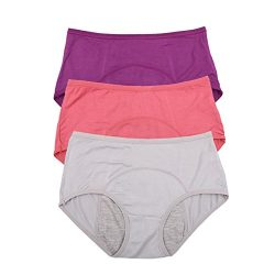 Bamboo Viscose Fiber Brief Menstrual Leakproof Panties 3 Pack US Size XXL/9, Elegance red,Purple ...