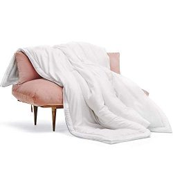 Buffy Cloud Comforter – Queen Comforter – Eucalyptus Fabric – Hypoallergenic B ...