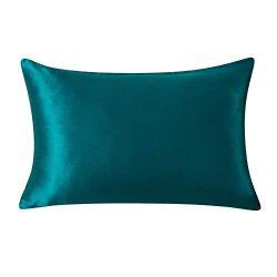 SLPBABY Silk Pillowcase for Hair and Skin with Hidden Zipper Print (Queen, Royal)