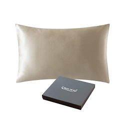 ZIMASILK 25 Momme 100% Mulberry Silk Pillowcase for Hair and Skin,Both Sides Natural Silk,Hidden ...