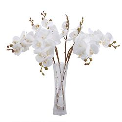 Bomarolan Artificial Butterfly Orchid Real Touch Faux Phalaenopsis Double Branch Silk Flowers 3D ...