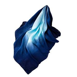 Silk Scarf-Han Shi Fashion Women Luxury Brand Gradient Color Head Shawl Scarves (F, L)