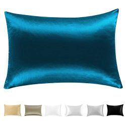 Wonwo Silk Pillowcase,100% Mulberry Natural Slip Pillowcase for Hair and Skin with Hidden Zipper ...