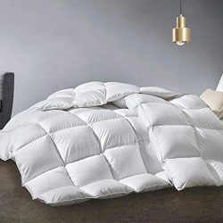 APSMILE Twin Size Goose Down Comforter All Seasons Duvet Insert -1600TC Egyptian Cotton, 33 Oz 7 ...