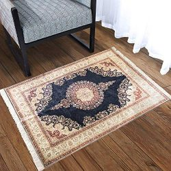 Silk Touch Turkish Area Rug, Non Slip, Non Skid, Machine Washable Rug with Silky Real Tassels 2& ...