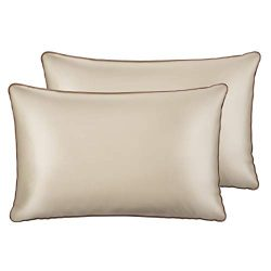 Sable Silk Pillowcase, 2 Pack Natural Mulberry Silk Pillowcases for Hair and Skin, Soft Breathab ...