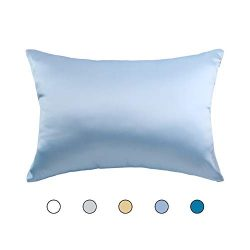 Hodeco Silk Pillowcase Sky Blue 14×20 Double Sides 100% Mulberry Silk 19 Momme Thick Nature ...