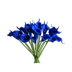 Mandy's 20pcs Navy Blue Artificial Calla Lily Silk Flowers 13.4″ for Home Kitchen &a ...