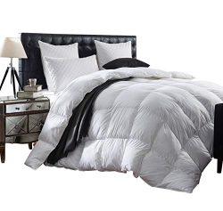 Luxurious 1200 Thread Count Goose Down Comforter Duvet Insert, Twin Size, 1200TC – 100% Eg ...