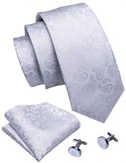 Barry.Wang White Paisley Ties Pocket Square Cufflinks Set Wedding Necktie Set
