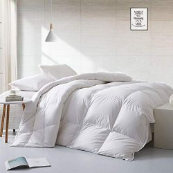APSMILE Twin Size European Goose Down Comforter Lightweight Duvet Insert for Summer Warmer Clima ...