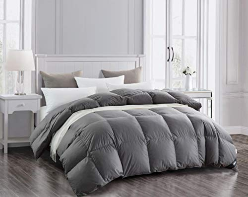 Topllen Luxurious Down Comforter King, 300TC 100% Cotton Downproof Hypoallergenic Fabric, 55oz H ...