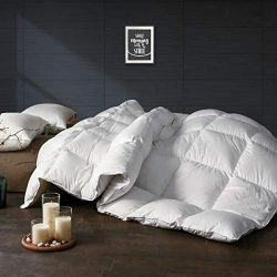 APSMILE Luxurious Twin Size All Seasons Goose Down Comforter – Ultra-Soft Egyptian Cotton, ...