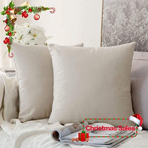 MIULEE Pack of 2, Velvet Soft Soild Decorative Square Throw Pillow Covers Set Cushion Cases Pill ...