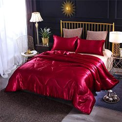 Enman-home Holawakaka Solid Santin Silk Like Quilt Set Ultra Soft Deluxe Comforter Pillowcase Qu ...