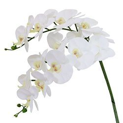 Htmeing 38 Inch Artificial Phalaenopsis Flowers Branches Real Touch (Not Silk) Orchids Flowers f ...