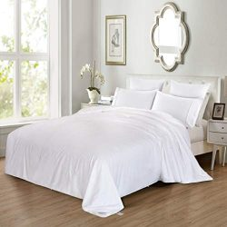 Silk Comforter Duvet, 100% Mulberry Silk Filled Quilt with Cotton Shell, Queen 90×86 Inches ...