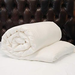 CUDDLE DREAMS Silk Comforter for Winter, 100% Long-Strand Silk Filling, Natural & Breathable ...