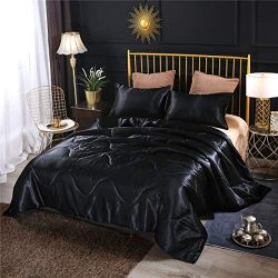 NTBED Luxury Silky Satin Comforter Set Soft Lightweight Microfiber Sexy Quilted Bedding Sets wit ...