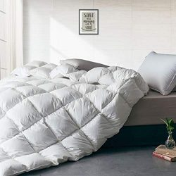 APSMILE Heavyweight European Goose Down Comforter for Winter Colder Weather/Sleeper – 1600 ...
