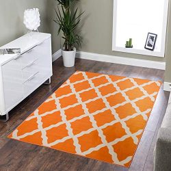 Silk Road Concepts Collection Contemporary Rugs, 5′ x 6'6″, Orange