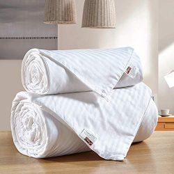 Moon's Sleepwares Combine Set 100% Pure Long Grade Mulberry Silk Comforter Silk Filled Com ...