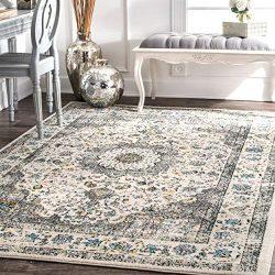 nuLOOM Paisley Verona Vintage Persian Area Rug, 8′ x 10′, Grey