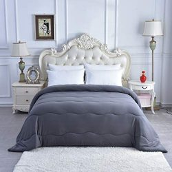 Selene's Home Bedding – 300 GSM Goose Down Alternative Quilted Comforter, Soft Milk  ...